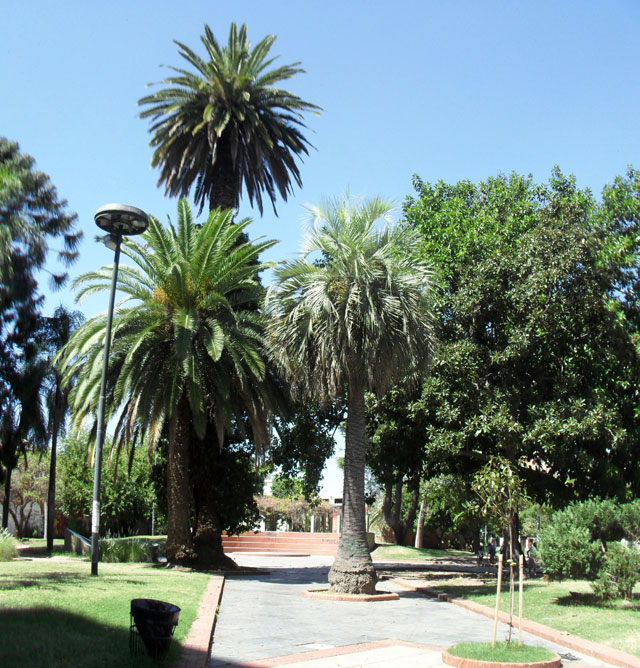 Plaza Ramon L. Falcon
